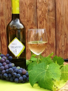"""SELVOTTO"" Vino Bianco"